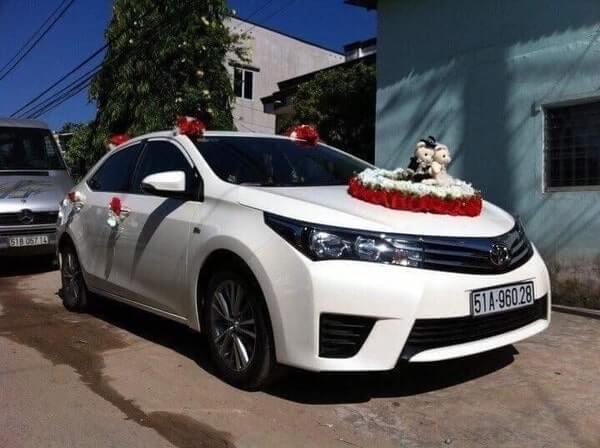 Thuê xe hoa Toyota Altis trắng đẳng cấp